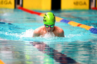 SUSM15 - Lewis McCartney Breaststroke